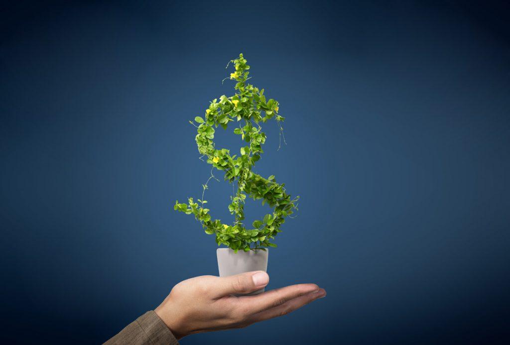 ¿Cómo crecer un pequeño negocio?